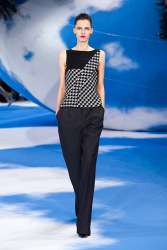 Trends_catwalk_yourself_AW13_dogtooth_dior_3